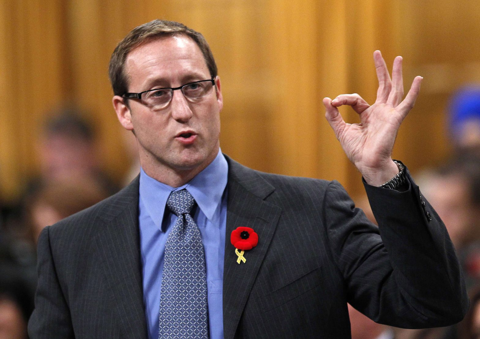 Peter MacKay, in context